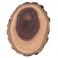 дерево Рука Будды
